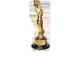 2013-AVA-Digital-Award-Banfield